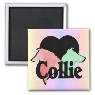 Rough and Smooth Collie Gifts Square Magnet