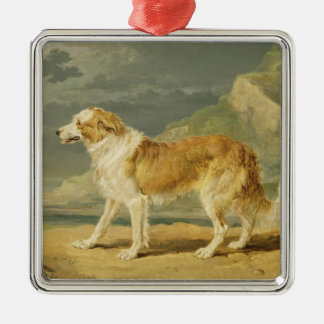 Rough-coated Collie, 1809 (oil on board) Christmas Ornament