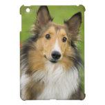 Rough Collie, dog, animal Case For The iPad Mini