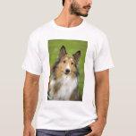 Rough Collie, dog, animal T-Shirt