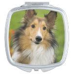 Rough Collie, dog, animal Vanity Mirrors