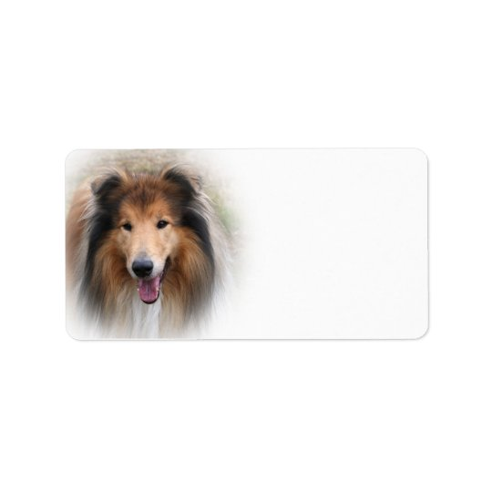 Rough collie dog beautiful blank address labels