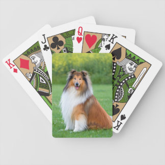Rough Collie dog beautiful photo portrait Bicycle Playing Cards
