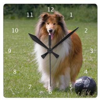 Rough collie dog beautiful photo portrait square wall clock