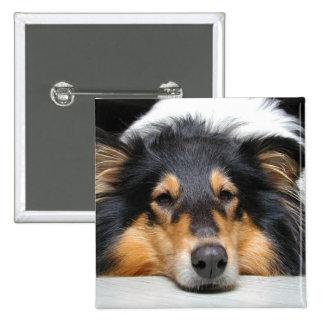 Rough Collie dog nose tri color photo button pin
