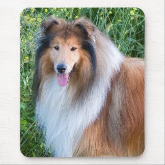Rough Collie dog portrait mousepad present idea
