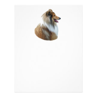 Rough Collie dog portrait photo 21.5 Cm X 28 Cm Flyer