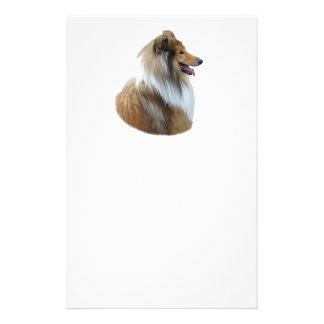 Rough Collie dog portrait photo Flyer Design