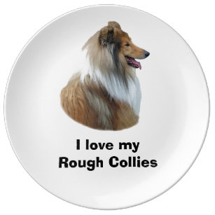 Rough Collie dog portrait photo Plate