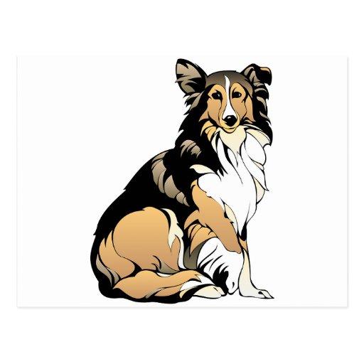 Rough Collie Dog Postcards