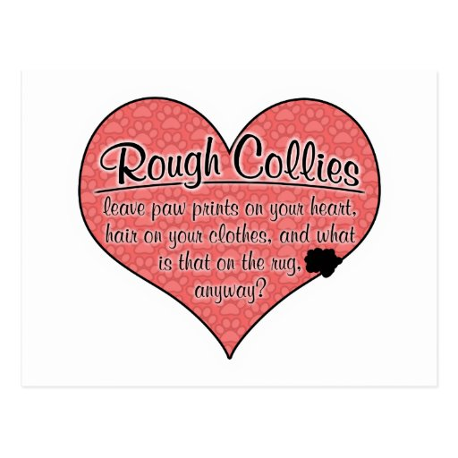 Rough Collie Paw Prints Dog Humor Postcard