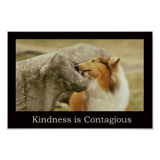 "Rough Collie Poster "" Kindness is Contagious"""