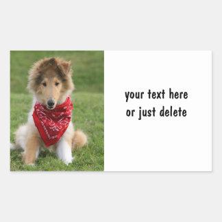 Rough collie puppy dog cute photo custom rectangular stickers