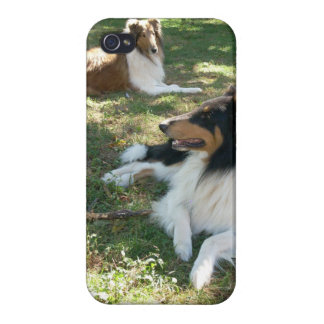 Rough Collies iPhone 4 case