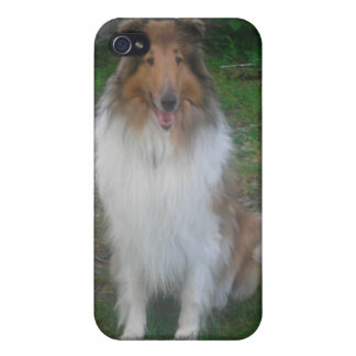 Rough (sable) Collie iPhone4 case Cover For iPhone 4