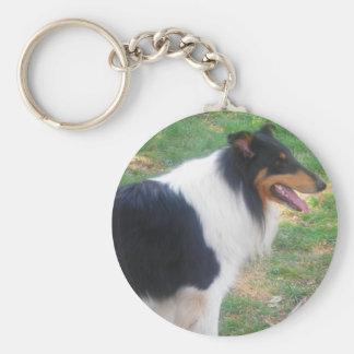 Rough Tri Collie keychain