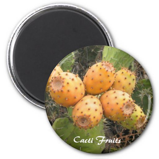 Round Magnet, Cacti Fruits