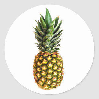 Round pineapple stickers