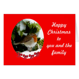 Round Robin Christmas card - customise