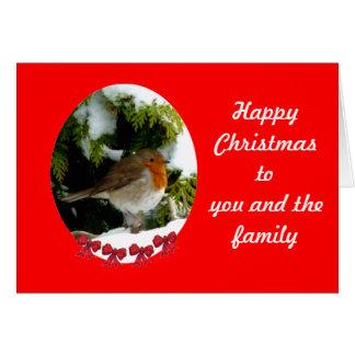 Round Robin Christmas card - customise