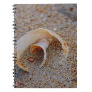 Round Seashell Notebook Notebook