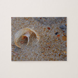 Round Seashell Puzzle Jigsaw Puzzle