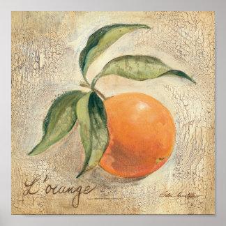 Round Shiny Orange Fruit Poster
