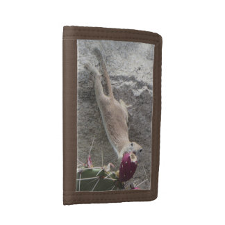 Round-tailed Ground Squirrel Stretching Tri-fold Wallet