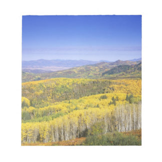Routt National Forest in Autumn color, near Notepad