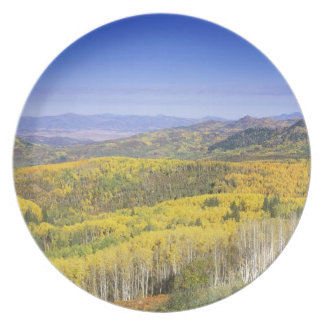 Routt National Forest in Autumn color, near Plate