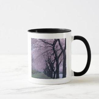 Row of cherryblossom trees mug