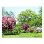 Row of Flowering Trees Invitation