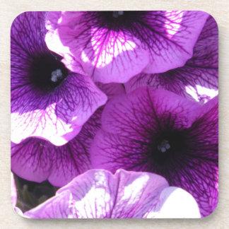 Row of Purple Petunias Drink Coaster