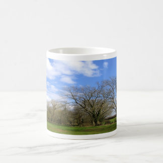 row of trees coffee mug