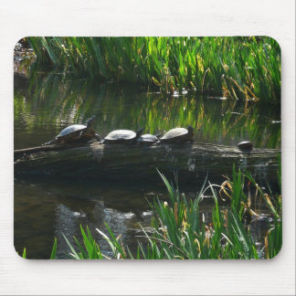 Row of Turtles Green Nature Photo Mouse Mat