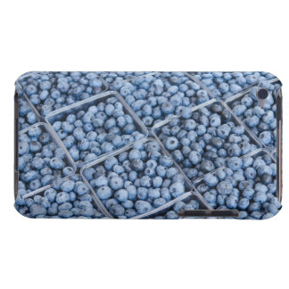 Rows of blueberries barely there iPod cases