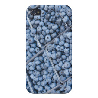Rows of blueberries case for the iPhone 4