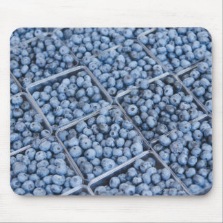 Rows of blueberries mouse mat