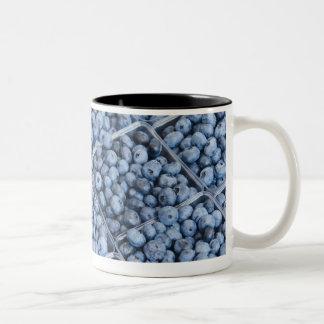 Rows of blueberries Two-Tone coffee mug