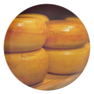 rows of colourful yellow Edam cheeses lined up Plate