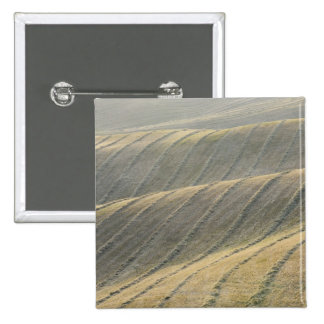 Rows of Harvested Wheat Field, Val d'Orcia, 15 Cm Square Badge