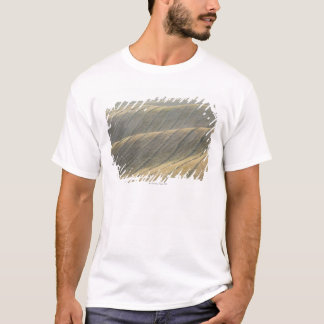 Rows of Harvested Wheat Field, Val d'Orcia, T-Shirt