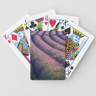 Rows of lavender in Provence Bicycle Playing Cards