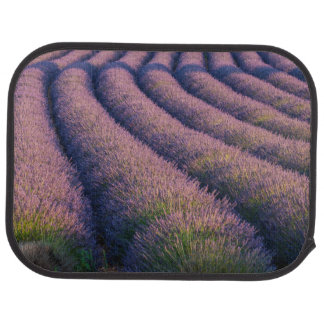 Rows of lavender in Provence Car Mat