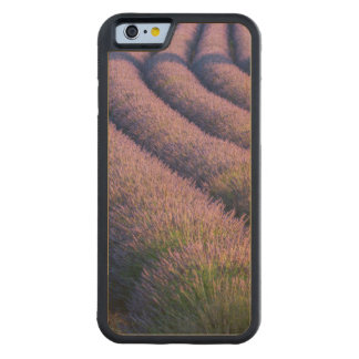 Rows of lavender in Provence Carved Maple iPhone 6 Bumper Case
