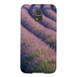 Rows of lavender in Provence Galaxy S5 Case