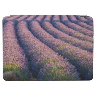 Rows of lavender in Provence iPad Air Cover