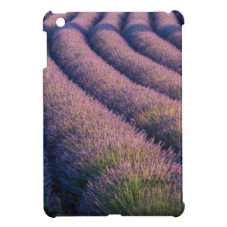 Rows of lavender in Provence iPad Mini Covers