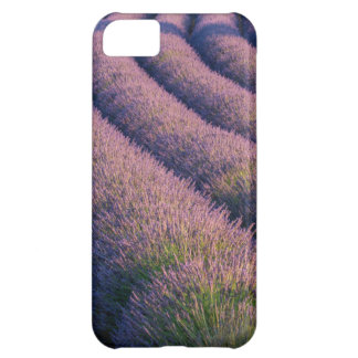 Rows of lavender in Provence iPhone 5C Case