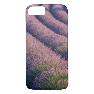Rows of lavender in Provence iPhone 8/7 Case